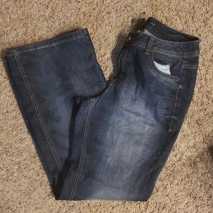 LANE BRYANT DARK genius fit Flare jeans sz 14